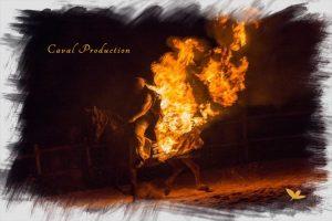 caval Production spectacle équestre propose un spectacle de feu Ave ce un numéro de cascade de cinéma avec le cheval de feu
